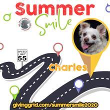 Charles Summer Smile